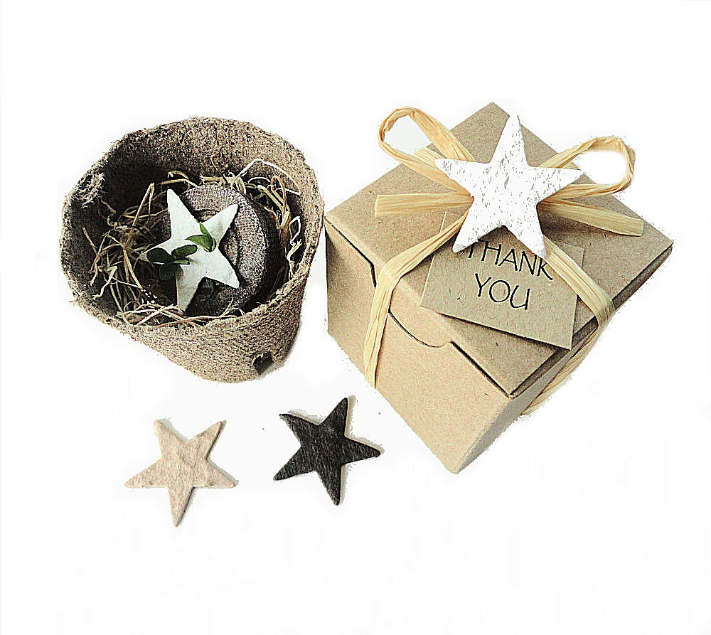 Plantable Party Favor Stars Western Wedding Favor