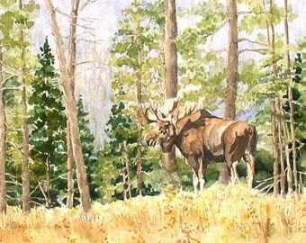Moose in Yellowstone National Park Watercolor
