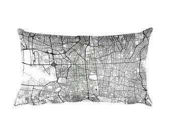 Tehran Pillow, Tehran Decor, Tehran Cushion, Tehran Throw Pillow, Tehran Gift, Tehran Throw, Tehran Iran Map, Tehran Art, Tehran Map Art