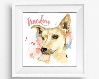 True Love Dog