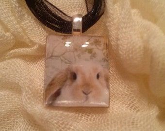 Adorable Bunny Necklace!