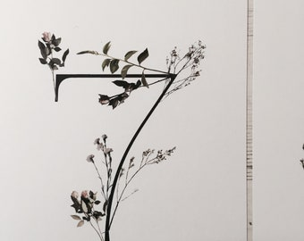 Wild Flower Wedding Table Numbers Pack 1-10