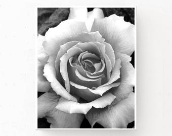 Black and White Rose Photograph, Digital Download, Rose Print, Rose Poster, Black and White Print, Modern Decor, Printable Wall Art