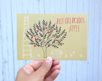 POSTCARD: Red Delicious Apple