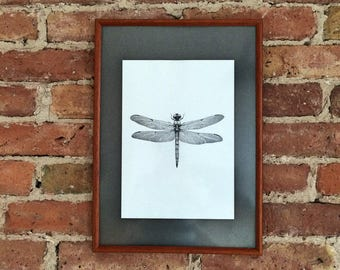 Dragonfly Art Print, Dragonfly drawing, home decor, fine art print, dragonfly print, insect wall art