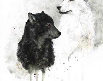 Black and White Wolves Watercolor PRINT -SALE-buy 2 get 1