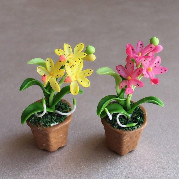 Flor miniatura miniatura maceta orqu dea miniatura mu ecas - Maceta para orquideas ...