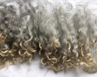 Natural Grey British Rare Breed Leicester Longwool locks 25gms. for Waldorf Dolls, Trolls, Gnomes, Elves,Fairies & Felting