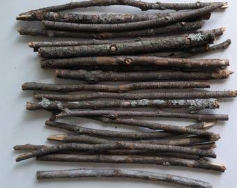 Aspen tree sticks, craft sticks and branches, twig craft supplies, natural craft supplies, fairy hobbit house, florist's supply
