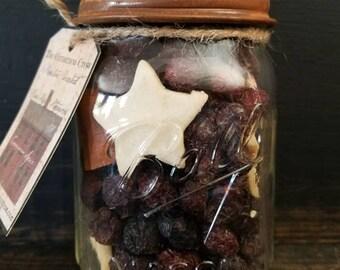 Prim Rose hip  Jar Potpourri ~ Cinnamon Spice