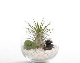 Small Zen Stacked Stone Terrarium