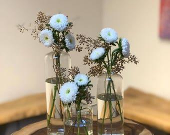 Clear Glass Bud Vase Trio Set 3