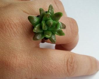 Adjustable succulent ring
