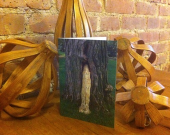 The Love Making Tree - Greeting Card