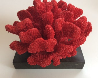 Vibrant Fire Coral Sculpture on Marble Base