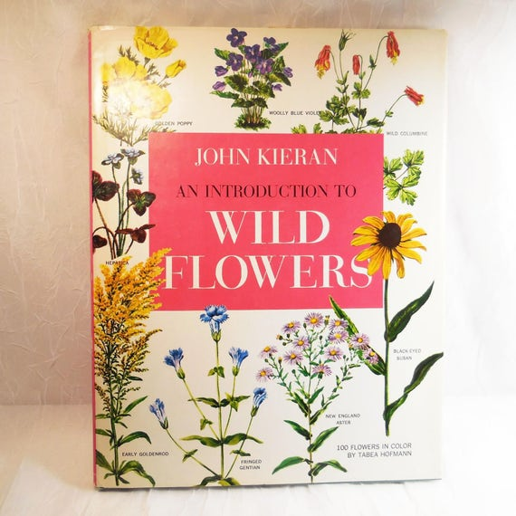 An Introduction to Wild Flowers