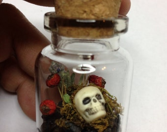 Mini terrarium - mini Garden - memento mori - skull - Landscape in a bottle