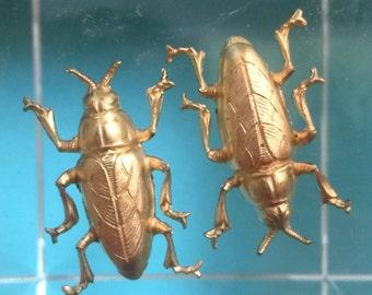 Smallest Brass Beetles (2 pc)