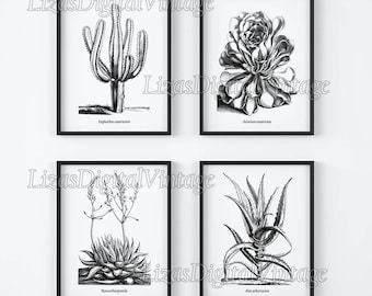 Black and white prints, Set of prints, Black and white wall art, Set of 4 botanical prints, Antique Botanical, Printable art, Download JPG