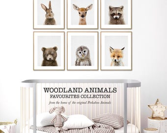 Woodland Animal Prints, Baby Nursery, Digital Download, Printable, Peekaboo Animals, Woodland Nursery Animal Decor