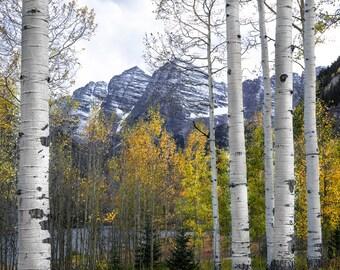 Mountains, fall aspen trees, snowy mountains, Maroon Bells, aspen tree decor, rustic home decor,  cabin decor, Colorado art, autumn trees