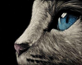 Blue Eyed Cat, Photo Realistic Scratchboard Cat Portrait