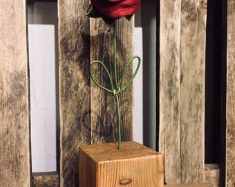 Everlasting Valentine Rose