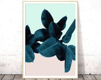 Ficus Elastica, Rubber Plant Print, Tropical Leaf Decor, Leaves Wall Art, Modern Botanical, Digital Download, Boho Chic, Large Poster, Teal