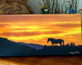 Mustang Silhouette Against a Blaze Orange Sky in Sand Wash Basin - 10x20 Gallery Wrapped Canvas Print