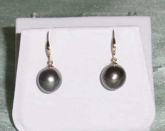 12mm Natural Peacock Gray Tahitian Cultured Pearls, 14kt Solid yellow gold Pierced Earrings