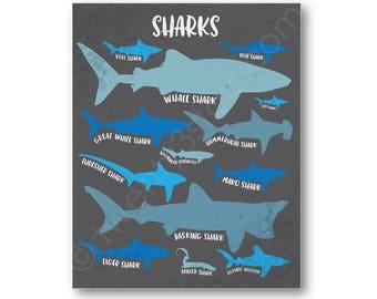 Requins Poster Print, sortes de requins Art, Art mural requin, requin cadeau, Art de Types de requin, requin affiche, cadeau d'amant de requin, requin toile Art