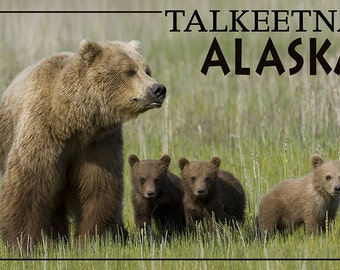 Talkeetna, Alaska - Grizzly Bear and Cubs (Art Prints available in multiple sizes)