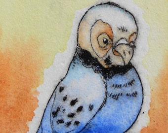 Whimsical art budgie bird illustration- Handpulled drypoint print with watercolor Wall art - Gus