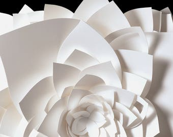 "11x14"" Wall Art, Lotus White and Black Flower Fine Art Photo Print, paper sculpture"