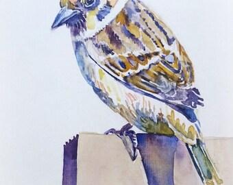 Handgeschilderde aquarel van een mus. Ansichtkaart.