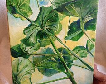 Under the geranium jungle