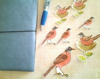 Spring Robin Sticker Set, unique, hand cut, Art Stickers