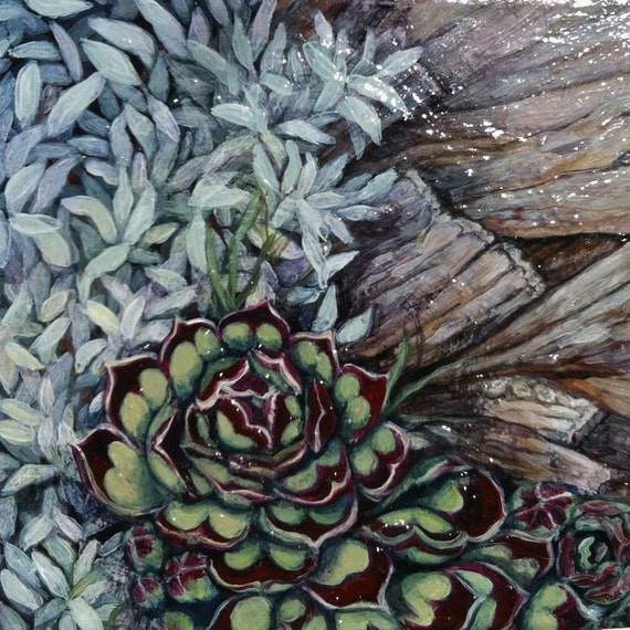 "Original Acrylic Painting, ""Hen and Chicks no. 4"", free shipping anywhere, succulents, garden art, xeriscape, original painting"
