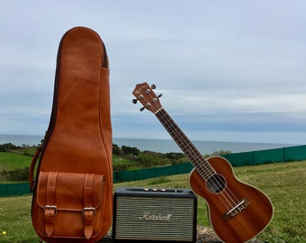 Distinctive and luxurious Ukulele case - Your music is unique, your case too.