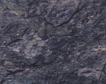 Northcott Fabric, Deborah Edwards, Naturescapes, Stone, Dark Grey, 100% cotton