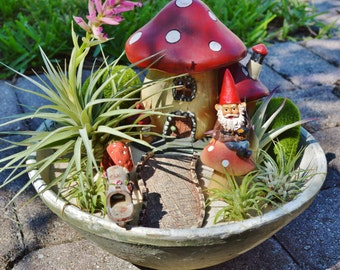 "Gnome Garden Planter ~ Gorgeous 10"" Bowl ~ Mushroom House ~ Garden Decor ~ 5 Air plants ~ House Plant ~ Plant Gift ~ Centerpiece ~ Gift Idea"