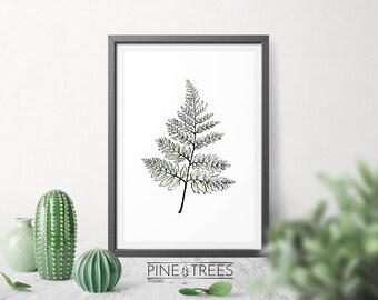 Fern printable art, botanical print living room decor, digital download