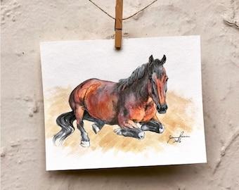 """Horse art original ink & watercolor painting - """"Taki"""" Laying"""