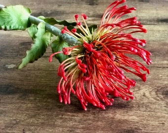 Red Pincushion Protea Faux Floral Stem