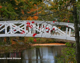 5 x 7 Greeting Card with Envelope - Somesville Bridge, Somesville, Maine, Stream, Reflections, Foliage, Acadia, Mt. Desert, Footbridge