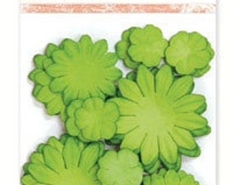 Paper Flowers - LIME