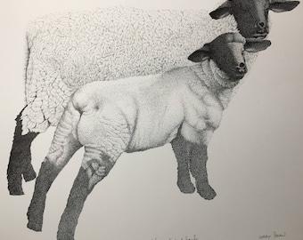 Drawing Pen and Ink Print, Stippling, Ewe and Lamb