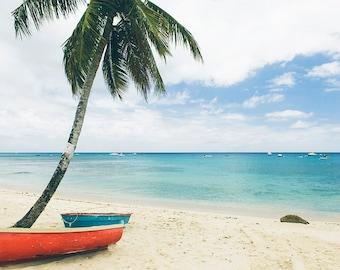 Palm Tree Photography, Beach Photography, Barbados Photography, Seascape Art, Home Decor, Aqua Blue, Ocean Summer, Surf Decor, Seascape Art