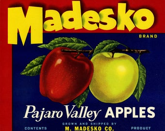 Lot of 10 Madesko Parjaro Valley  Vintage Apple Crate Labels