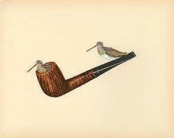 Snipe pipe. Original collage by Vivienne Strauss.